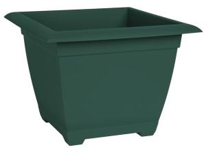 Bloem Dayton Square Box Turtle Green 10ea/15 in