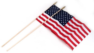 Flag Zone American Hand Flag 12ea/2Pk 12Inx18 in