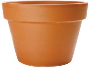 Pennington Fern Azalea Pot Terra Cotta 24ea/4.25 in