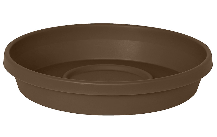 Bloem Terra Saucer Chocolate 10ea/12 in