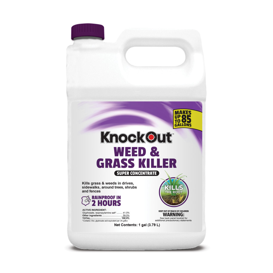 Knockout Weed & Grass Killer 41% Super Concentrate Purple 4ea/1 gal