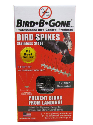 Bird-B-Gone Stainless Steel Bird Spikes Clear 6ea/6 ft